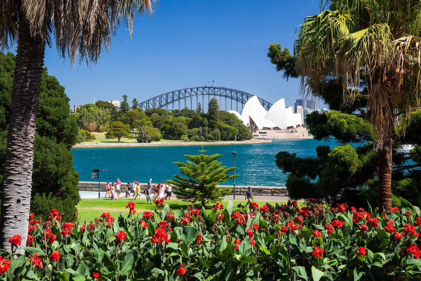 rentalcars24h blog sydney park4 #1 Sydney Sight To Admire Australian Nature!