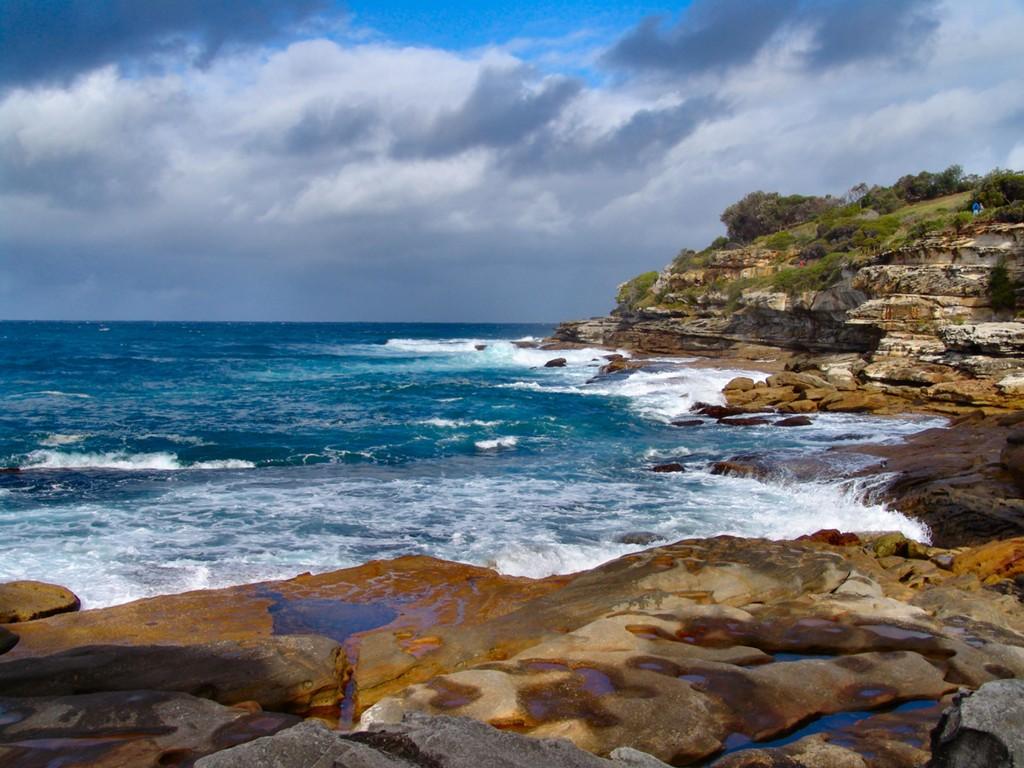 rentalcars24h blog sydney park6 #1 Sydney Sight To Admire Australian Nature!