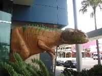 Car rental in Townsville, Australia